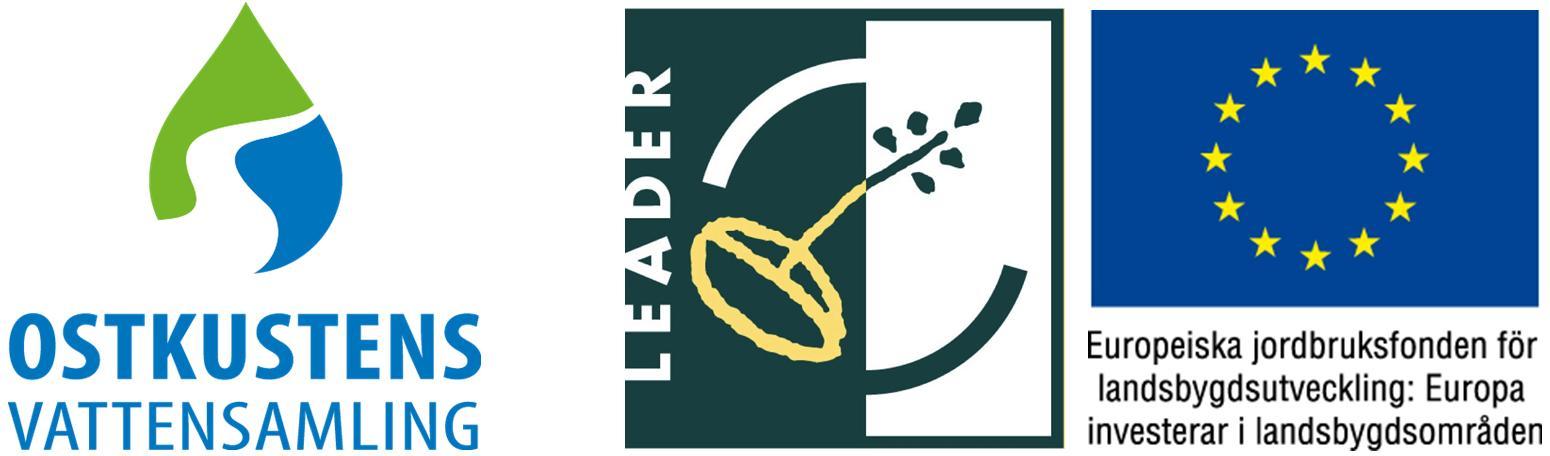 OVS LEADER