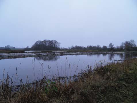 okt 2014: våtmark vid Vassmolösa utvidgades